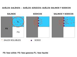 Recuperación de suelos salinos y sódicos