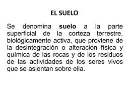 EL SUELO - Webnode