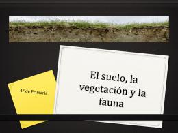 Tema 10 El suelo, la vegetación y la fauna