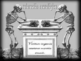 PARTE II-VALORACIÓN SNC