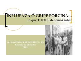 Influenza porcina: posible pandemia