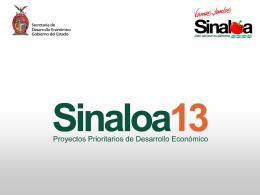 Sinaloa 13