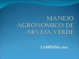 05 CULTIVO DE ARVEJA II