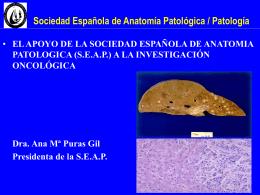 S.E.A.P. - Comunidad Virtual de Anatomía Patológica