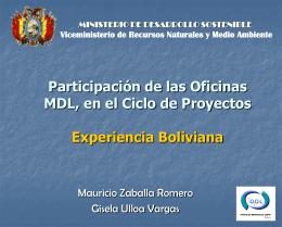 Participación de Oficinas MDL en el Ciclo de Proyectos dentro del