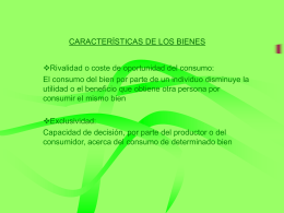 CARACTERÍSTICAS DE LOS BIENES