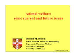 Anim. Welfare - welanimal project