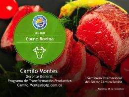 SECTOR Carne Bovina