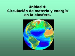 Unidad 4: Circulación de materia y energía en la