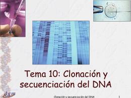 Tema 10: Clonación y secuención del DNA