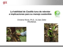 Habilidad - Agenda Forestal Hondureña