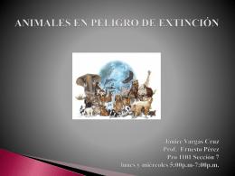 ANIMALES EN PELIGRO DE EXTINCIÓN Janice Vargas C