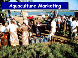 Aquaculture Marketing Opening Comments