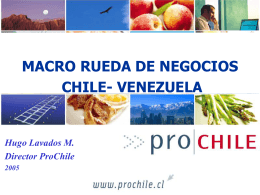 Ver presentación Sr. Hugo Lavados, Director de PROCHILE