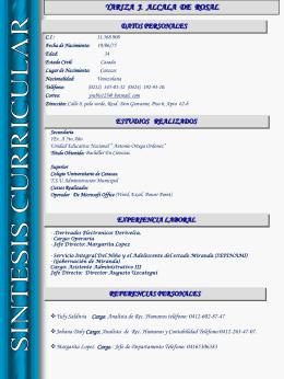 Curriculum Vitae - Gobierno del estado Miranda