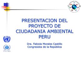 Lanzamiento del Proyecto C. A.