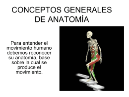 CONCEPTOS GENERALES DE ANATOMÍA