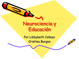 neurociencia-y-educacin.