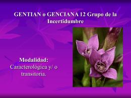GENTIAN o GENCIANA 12 Grupo de la Incertidumbre