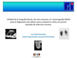 utilidad de ecografia renal y gammagrafia dmsa para