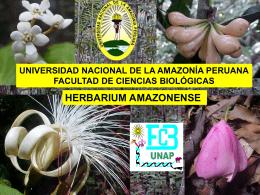 Descargar información adicional - Universidad Nacional de la