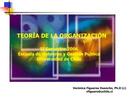 Clase XIII Teoría de La Organización (Figueroa)