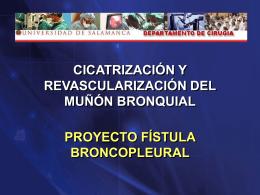 Presentacion SOCALPAR 2010