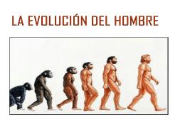 Evolución humana - Colegio Humberstone