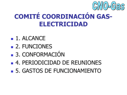 comité coordinación gas-electricidad - CNO-Gas