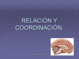 Función relacion