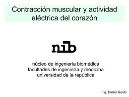 Contraccion muscular y actividad electrica del corazon