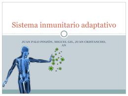 Sistema inmunitario adaptativo