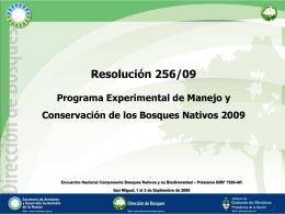Informe Técnico Resolución 256