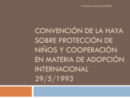 Convencion de La Haya sobre restitucion de niños
