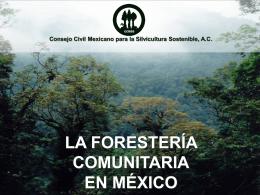 Consejo Civil Mexicano para la Silvicultura Sostenible, AC LA