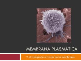 Membrana Celular (A.M.Jerez)