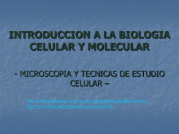 Técnicas moleculares III