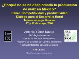 Ponencia de Antonio Yúnes-Naude