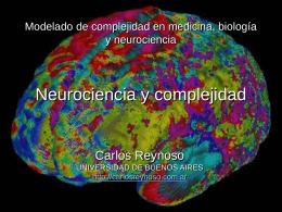 Neurociencia y complejidad