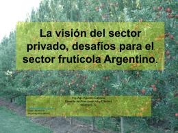 05. Vision sector Privado