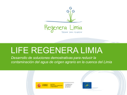 life regenera limia