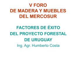 Forestación en Uruguay