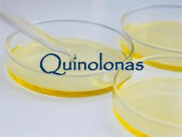 Quinolonas 2009