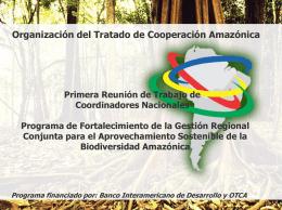 Plano Accion - Nestor Ortiz