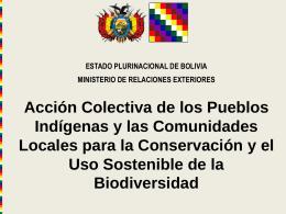Acción Colectiva de los Pueblos Indígenas y las Comunidades