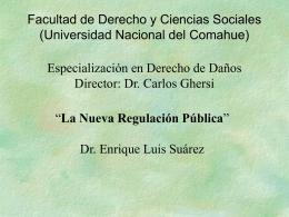 3-la-nueva-regulacion-publica
