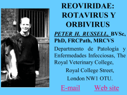 Rotavirus (RV)