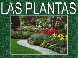 Las plantas son seres vivos - gonzalo de berceo