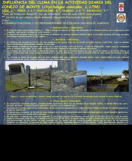 Influencia del clima en la actividad diaria del conejo de monte(808