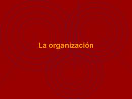 La_organizacion - Aula Virtual